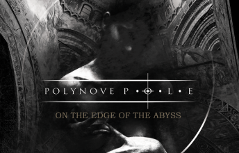 polynove-pole-on-the-edge-of-the-abyss-was-lange-waehrt-wird-endlich-gut