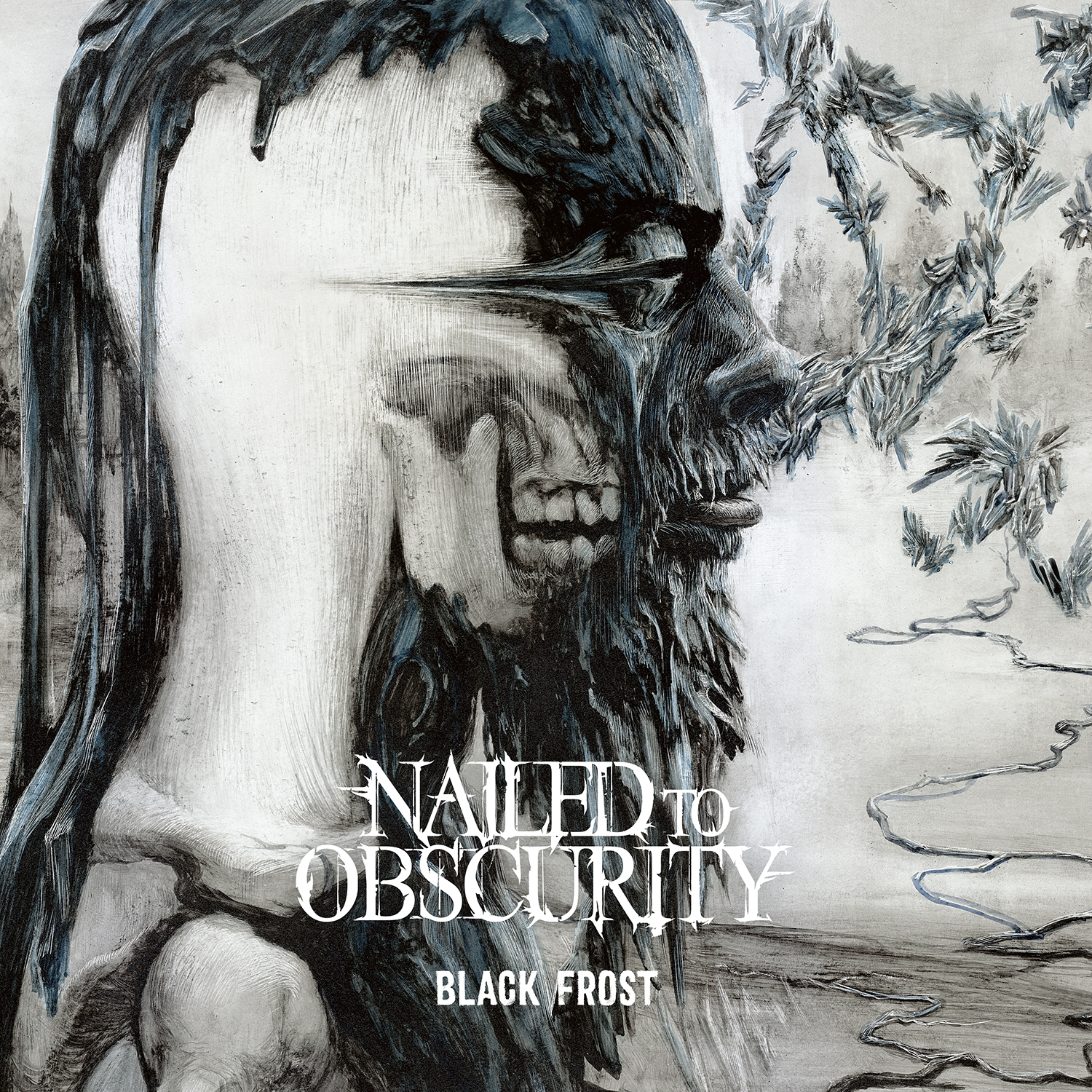 cd-review-nailed-to-obscurity-black-frost-angst-essen-seele-auf