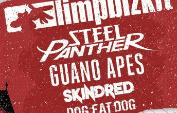 die-gig-chance-fuer-junge-bands-in-graz-rock-in-graz-sucht-support-acts