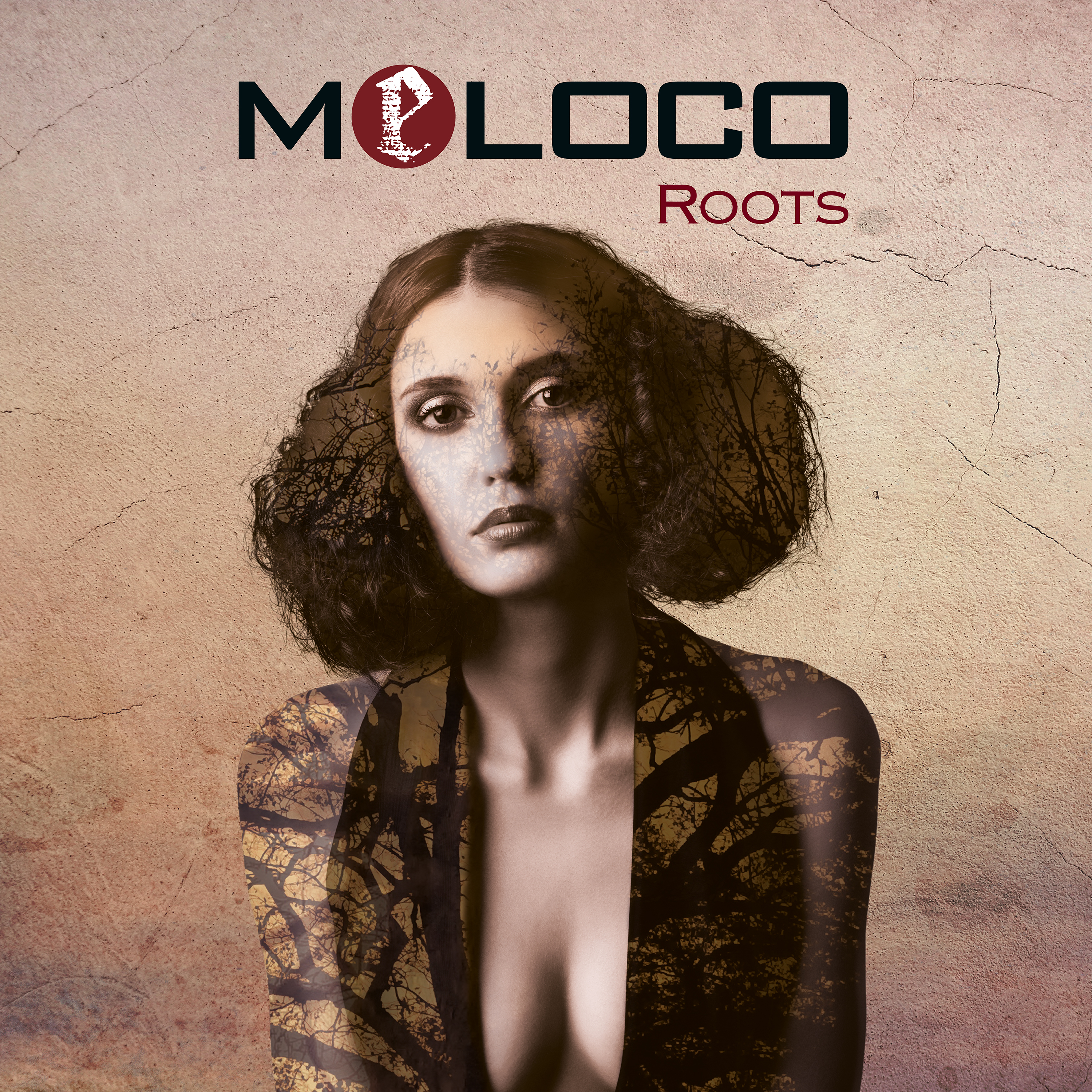 meloco-roots-ein-album-review