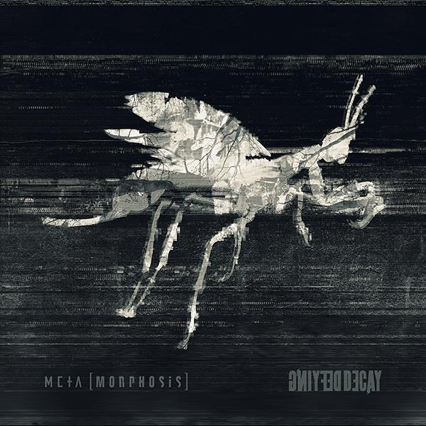 defying-decay-metamorphosis-album-review