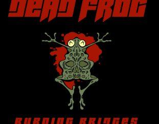 Dead Frog – Burning Bridges – Emotionale Soundlandschaften – Album Review