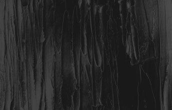 krvvla-t-eine-reise-durch-die-bialowiezer-heide-single-review