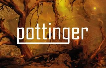 pottinger-awaken-ein-album-review
