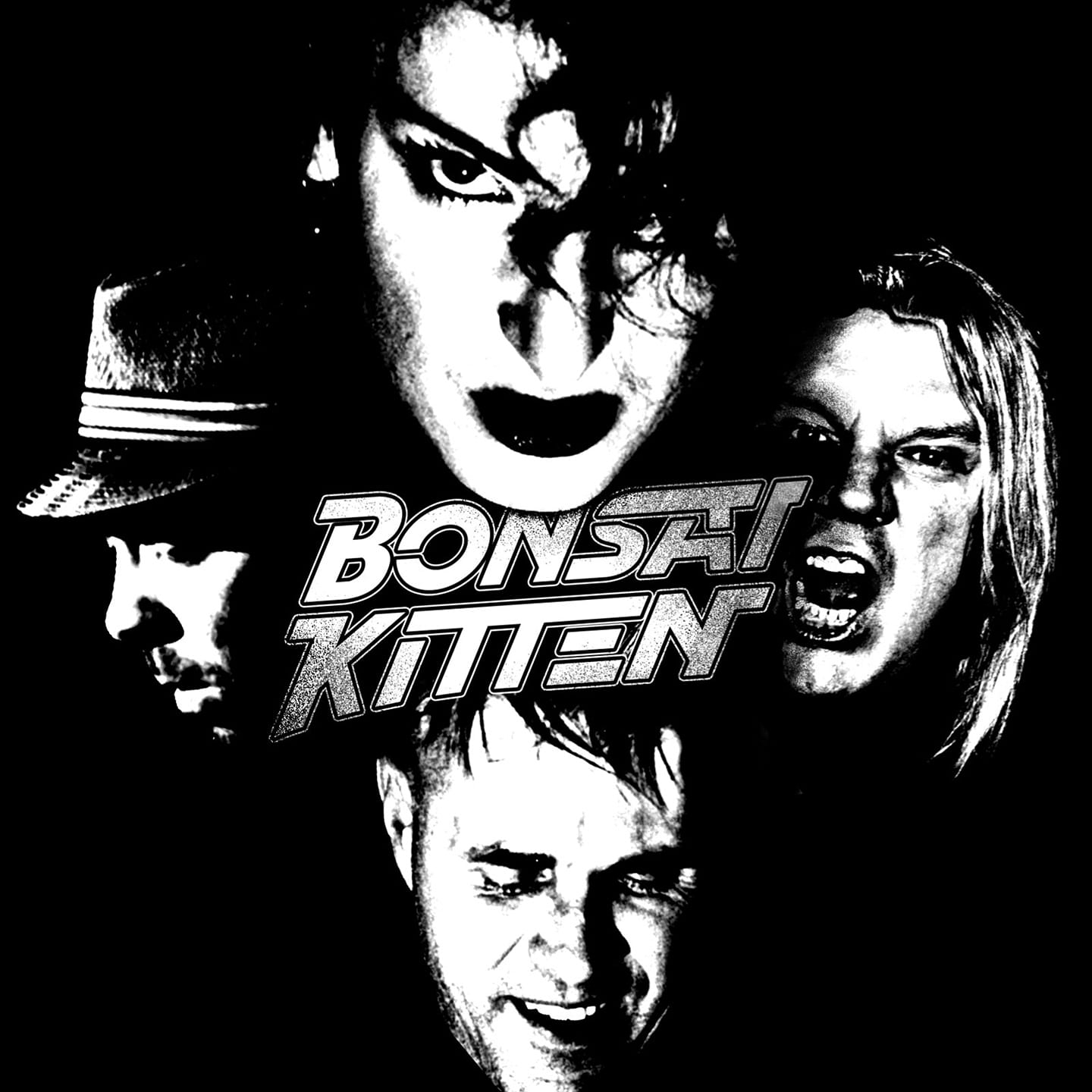 bonsai-kitten