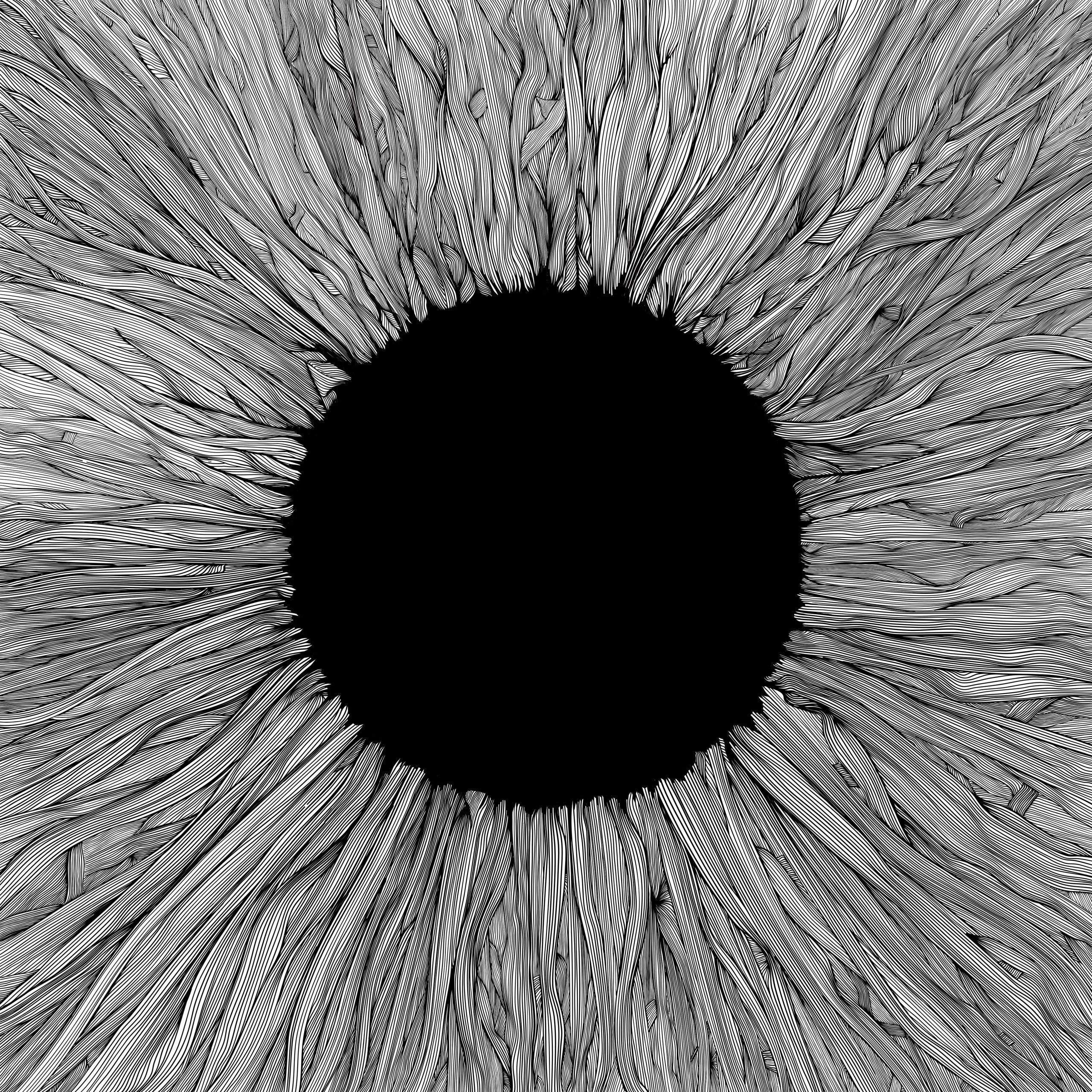 vola-witness-das-ganze-spektrum-album-review