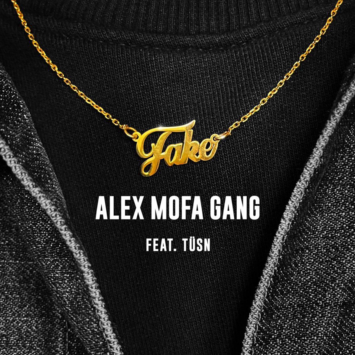 alex-mofa-gang-fake-video-premiere